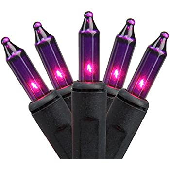 Northlight Set of 100 Pink Purple Mini Halloween or Christmas Lights - Black Wire