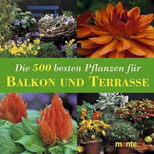 die-500-besten-pflanzen-fr-balkon-und-terrasse-kbelpflanzen-rosen-kletterpflanzen-kruter-gemse-obst