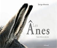 Les ânes par Serge Alvarez