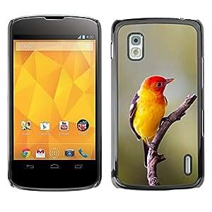 All Phone Most Case / Hard PC Metal piece Shell Slim Cover Protective Case Carcasa Funda Caso de protección para LG Google Nexus 4 E960 yellow bird songbird spring nature branch