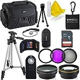 Professional 55MM Accessory Bundle Kit for Nikon D3400 D5600 D3300 AF-P & DSLR Cameras, 15 Accessories for Nikon