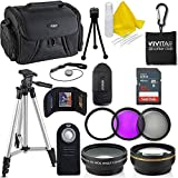 Professional 55MM Accessory Bundle Kit Nikon D3400 D5600 D3300 AF-P & DSLR Cameras, 15 Accessories Nikon