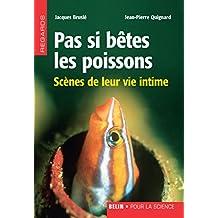 Pas si bêtes les poissons. Scènes de leur vie intime: Scènes de leur vie intime (Regards) (French Edition)