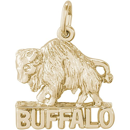 14k Gold Buffalo Charm (Rembrandt Charms 14K Yellow Gold Buffalo, New York Charm (0.54 x 0.67 inches))