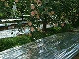 NAVADEAL Silver Reflective Mylar Film- 82 x 47 inch