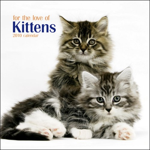 - Kittens, For the Love of 2010 Mini Wall