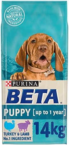 BETA Puppy Dry Dog Food Turkey & Lamb, 14kg – Dogs Corner
