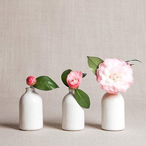 Amazon White Porcelain Bud Vasesset Of Three Handmade