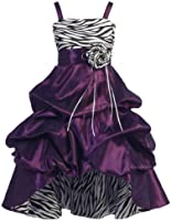 Wonder Girl Sasha Big Girls' Taffeta Zebra High Low Dress