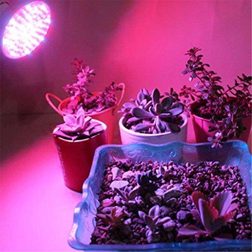 GOTD LED Grow Light, Full Spectrum Hydroponic Light Bulb High Luminosity & Low Power Consumption - Plant Grow Lights Greenhouse Garden Indoor Growing Flowers Plants Veg (Silver)