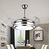 Modern Ceiling Fan with Light Bluetooth Speaker and Remote Ceiling Lamp Dimmable