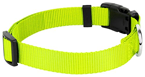 Country Brook Petz - 25+ Vibrant Colors - American Made Deluxe Nylon Dog Collar with Buckle (Extra Large, 1 Inch Wide, Hot Yellow)