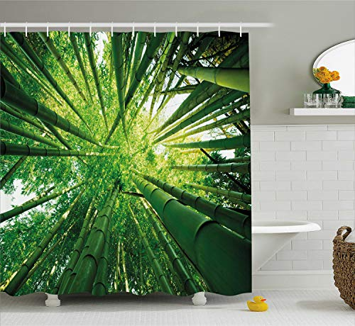 Ambesonne Nature Shower Curtain, Upward Bamboo Stems in Jungle Rainforest Exotic Lush Tree Woodland Shadows Picture, Fabric Bathroom Decor Set with Hooks, 75 inches Long, Hunter Green
