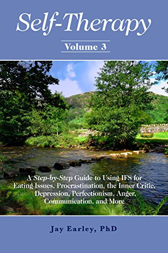 Self-Therapy, Vol  3: A Step-by-Step Guide to Using IFS for Eating Issues,  Procrastination, the Inner Critic, Depression, Perfectionism, Anger,