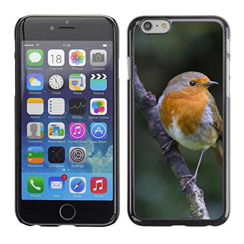 "Premio Sottile Slim Cassa Custodia Case Cover Shell // F00015006 oiseau // Apple iPhone 6 6S 6G 4.7"""