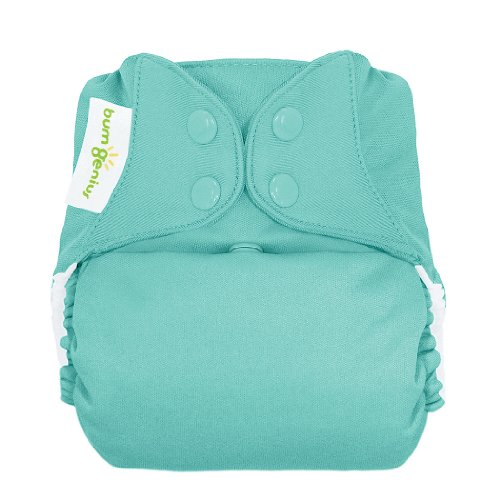 BumGenius Freetime All in One Cloth Diaper - Snap - Mirror - One Size