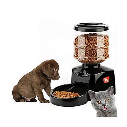 Alimentador automático del alimento para animal doméstico, de la capacidad grande 5.5L con la función de grabación