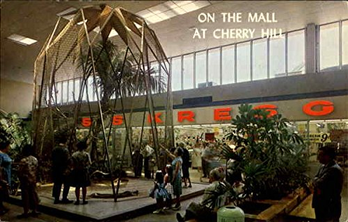 On The Mall At Cherry Hill Shopping Center Cherry Hill, New Jersey Original Vintage - Hill Jersey Cherry Mall New