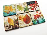 Autumn Leaves Fall set of 6 Coasters 3.5 inch neoprene drink beverage Thanksgiving home decor hostess gift