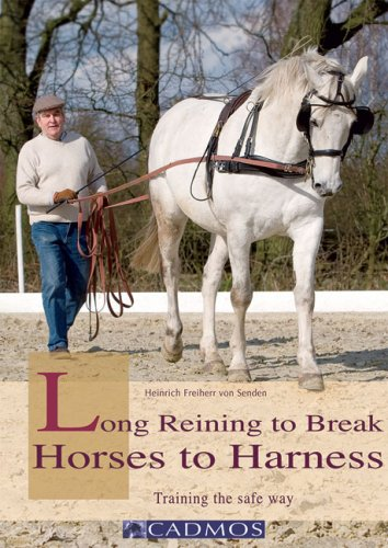 (Long Reining to Break Horses to Harness: Training the Safe Way)