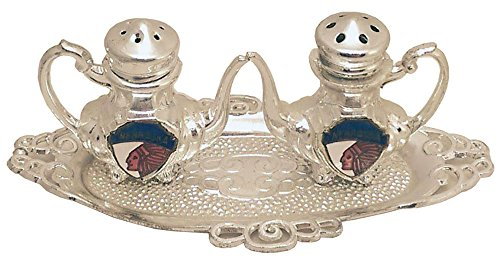 Collectible Serving Tray Salt and Pepper Shaker From Nebraska