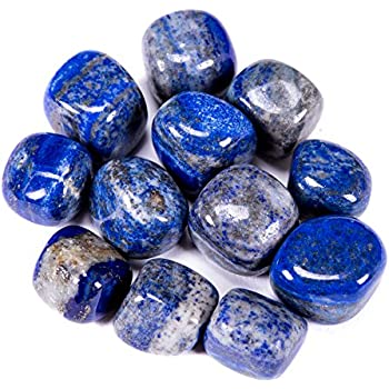 Bingcute 1/2lb Bulk Large Natural Lapis Lazuli Tumbled Polished Stones from Afghanistan 1