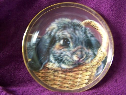 Bradford Exchange 1998 Bunny Tales Collectible Plate