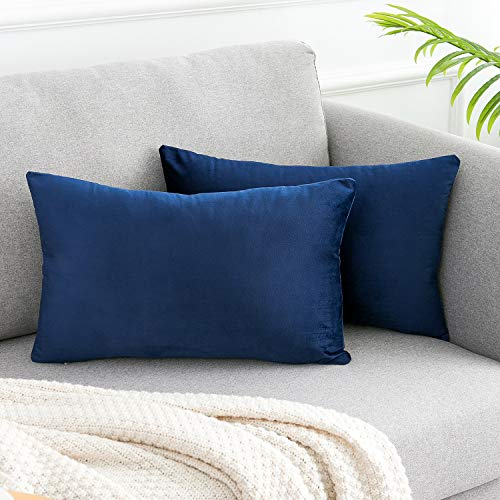 WLNUI Soft Velvet Navy Blue Throw Pillow Covers Set of 2 Decorative Pillow Case Lumbar Cushion Cover for Sofa Couch Home Farmhouse Decor 12x20 Inch 30x50 cm (Pillows And Royal Blue Gold)