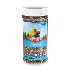 Kaytee Forti-Diet Pro Health Canary And Finch Songbird Treat, 9-Oz Jar 22
