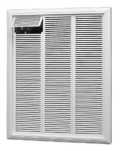 Dimplex RFI840D41 4000-Watt 277-Volt 13648-BTU Commercial Fan-Forced Wall Heater by Dimplex