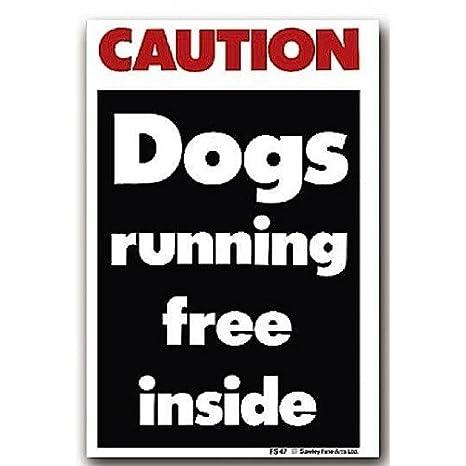 Señal de advertencia en inglés, «hay perros sueltos»: Amazon ...