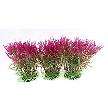 Amazon.com : eDealMax acuario Artificial Submarino Plant paisaje de hierba 14, 5 x 10cm 3pcs : Pet Supplies