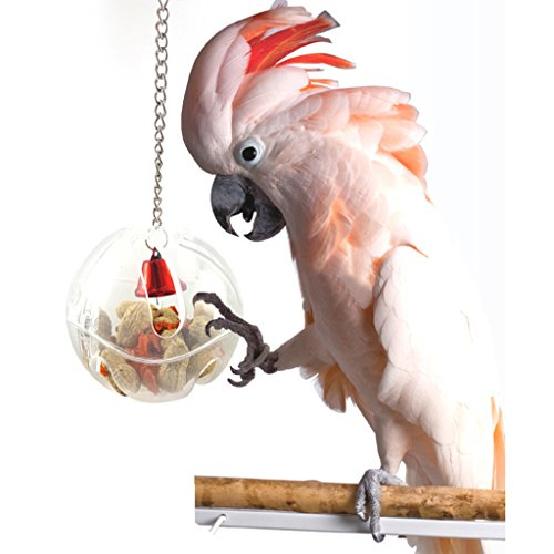 TOUGH GIRL Hang Foraging Food Container Bird Feeders Parrot Toy Pet Treat Hunt Macaw Cockatoo Acrylic Bird Supplies Bird Feeder for Parrots (Bird Feeder) -