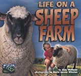 Life on a Sheep Farm, Judy Wolfman, 1575051923