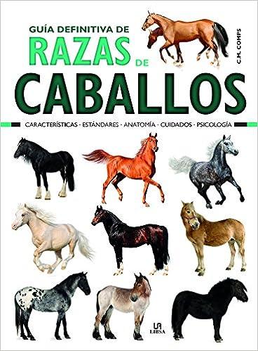 Guía Definitiva de Razas de Caballos: Características, Estándares ...