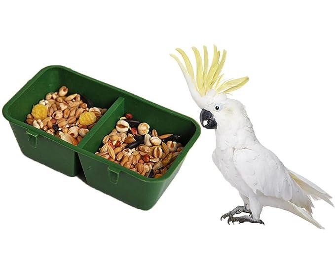 2 en 1 Doble) alimentación Bird Food Dish Agua Feeder cuenco con soporte para Parrot Macaw africana Greys Budgies periquito Cockatiels Conure jaula: ...