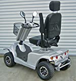 Ehandygadgets Deluxe Electric Scooter (Silver)