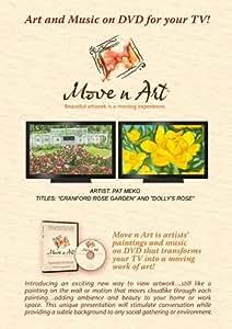 Move n Art - Pat Meko 300