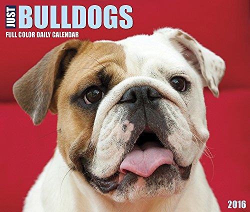 bulldog desk calendar - 6