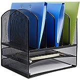 AmazonBasics Mesh Six Slot File Storage Office