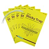 Insect trap, Yellow dual sided sticky insect trap for white flies, fungus Gnats, aphids,  leafminers , pest control (100 pack, 500 traps)