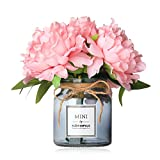 Missblue Faux Hydrangea Flowers in Vase,Artificial Silk Hydrangea Flower Bouquet with Glass Jar Home Rope for Wedding Proposal Bride Home Decoration and The Best Gift (Pink)