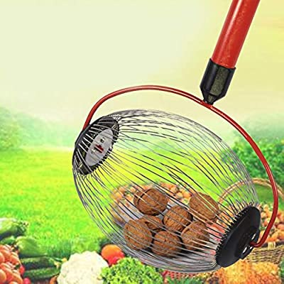 Lorchwise Nut Gatherer, Garden Rolling Nut Harvester, Fruit Picker with Light-Weight Aluminum Telescoping Pole : Garden & Outdoor