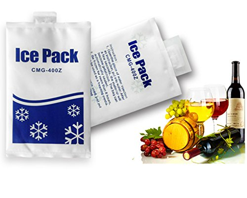 Ice Pack Reusable 300-500 Times Cooler Packs 6Packs