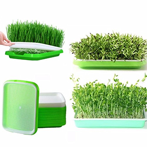 E-dance Seed Sprouter Tray, Two-Tiered Kitchen Crop Sprouter Plant Germination Tray Hydroponics Basket, Color Randomly -