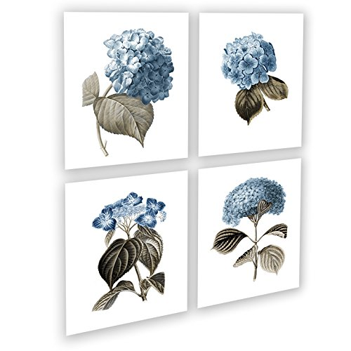 Blue Flowers Botanical Prints Set of 4 Unframed Hydrangeas Botanical Art Prints, Farmhouse Decor Blue_Hydrangea4A