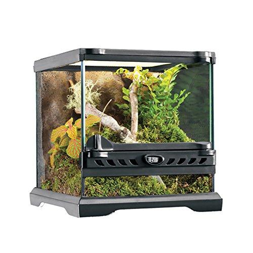 Exo Terra Nano Glass Terrarium Reptile Habitat - 8 x 8 x 8 Inches - Exo Terra Glass Terrarium Reptile Habitat