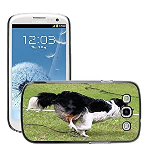 GoGoMobile Slim Protector Hard Shell Cover Case // M00118561 Border Colly Dog Hundesport Agility // Samsung Galaxy S3 S III SIII i9300