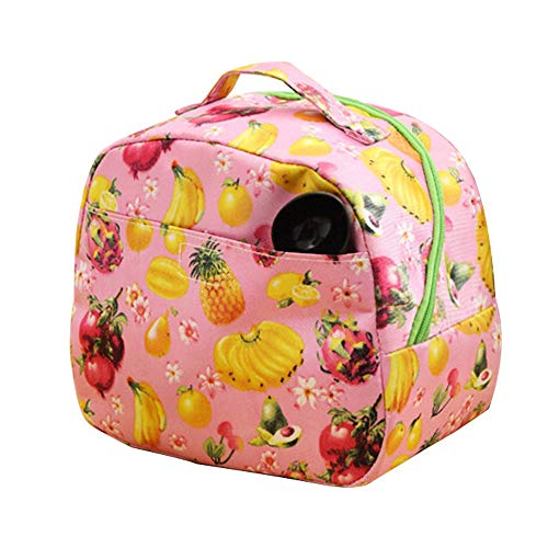 NUWFOR Portable Waterproof Insulation Fruit Pattern Picnic Carrying Box Hot Lunch Bag Pink ()