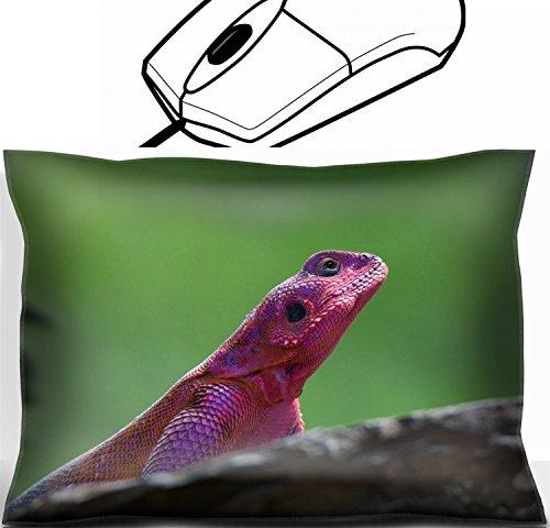 MSD Mouse Wrist Rest Office Decor Wrist Supporter Pillow design 35532336 Mwanza flat headed rock agama Agama mwanzae sitting on a rock -